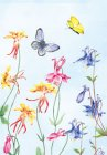 Allelei vlinders